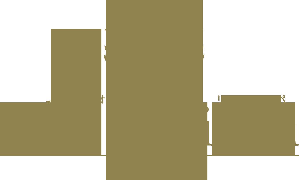 大阪 派遣型 出張 リラクゼーション マッサージ | O'de mari spa OSAKA-オオデマリスパ大阪-フッターロゴ画像